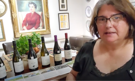 A taste Hungary Wine Unboxing video