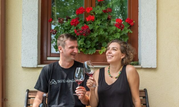 Taste Hungary Wines and Tours